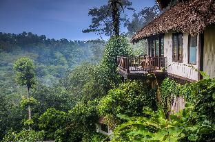 ナンディニ バリ ジャングル リゾート&スパ ウブッド3