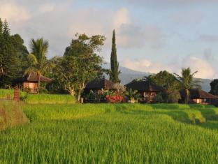 Puri Lumbung Cottages Hotel Bali - Exterior