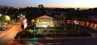 Reviews Alexis Park All Suite Resort