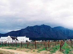 Stellenbosch Lodge Stellenbosch - View Of The Vineyard