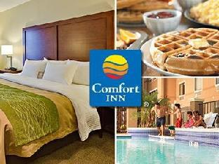 Best guest rating in Franklin (TX) ➦ Best Western Franklin Inn and Suites takes PayPal
