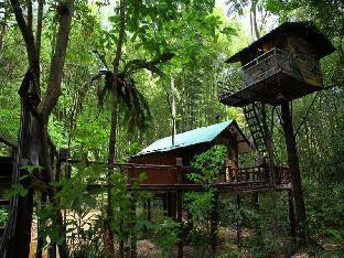 Khaosok Treehouse Resort discount