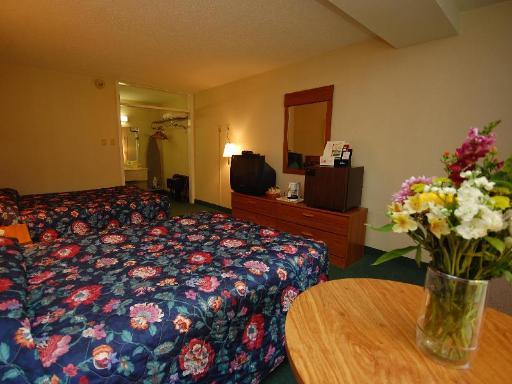 ➦  Magnuson Hotels    (Massachusetts) customer rating