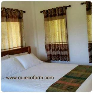 Our Eco Farm guestroom junior suite