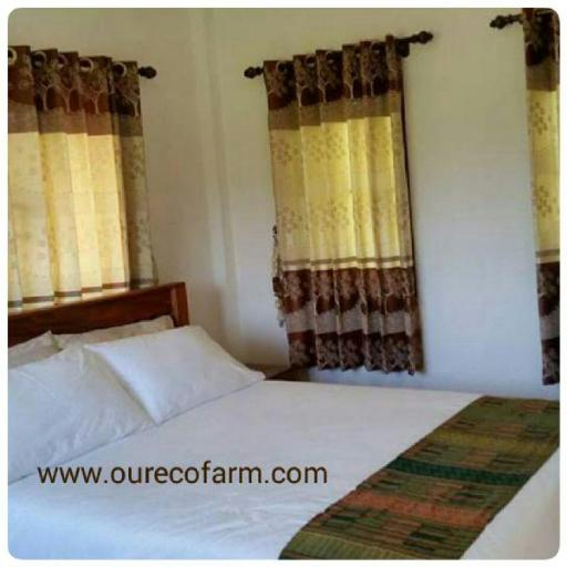 Our Eco Farm hotel accepts paypal in Chanthaburi