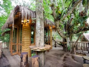 Dreamcaught Tree House