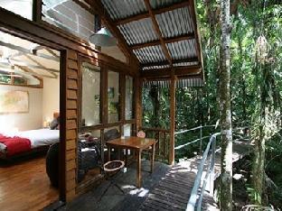 Daintree Wilderness Lodge5