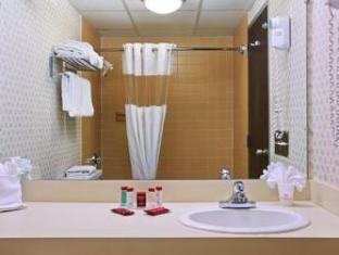 Ramada Inn Bradley Hotel Windsor Locks (CT) - Bathroom