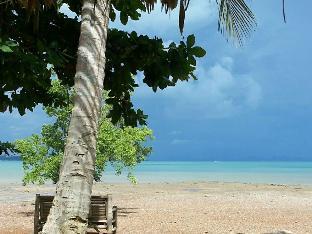 Tree in the sea 4 Ko Lanta Noi Krabi Thailand