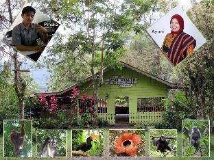 Batak House 2 @ Sadar Wisata Guesthouse