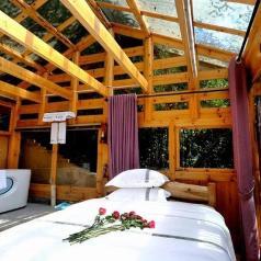 Naked tree house, Zhangjiajie