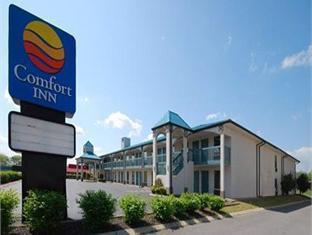 Comfort Inn Gallatin Hotel Photo 4