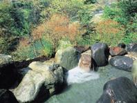 Kinugawa Park Hotels Kinshintei