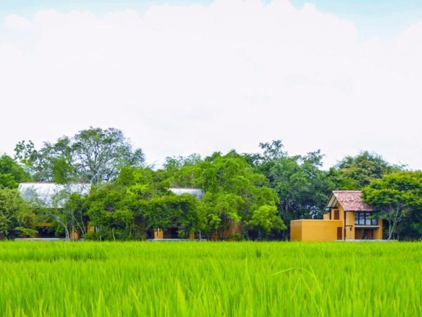 Mankada Resort Anuradhapura