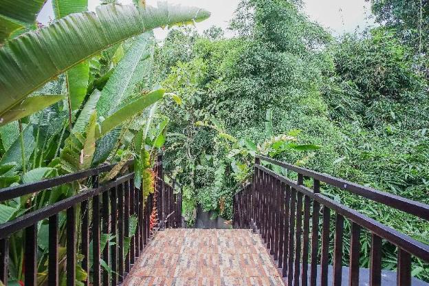 Green View Ubud