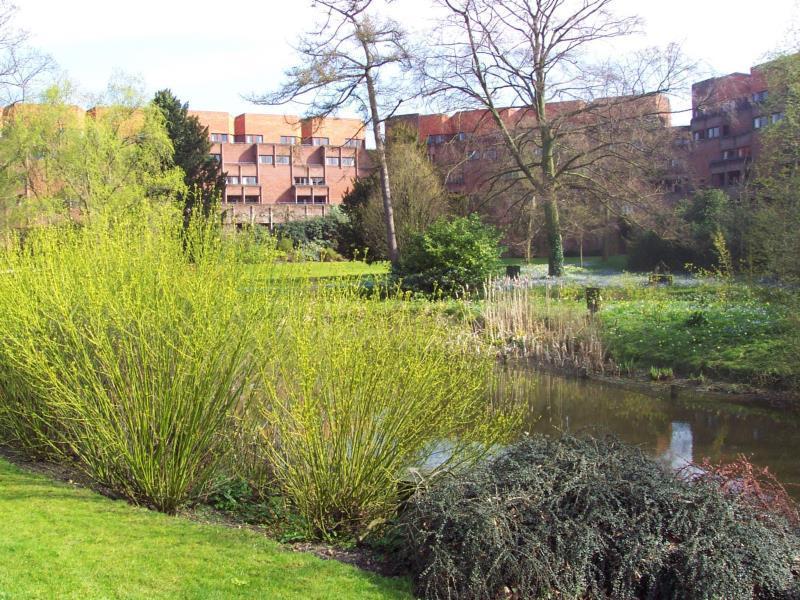 Robinson College   University Of Cambridge
