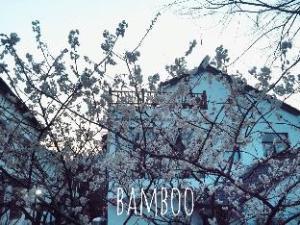 Hangzhou Bamboo Hotel