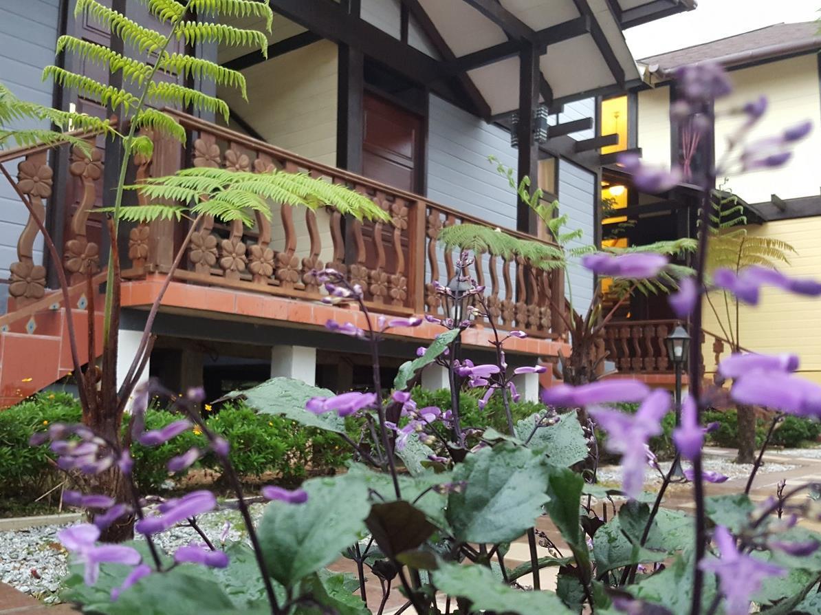 Casa Loma Cameron Highland
