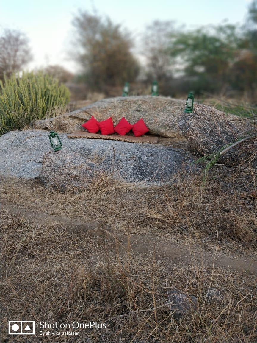 Jawai Jungle Camps