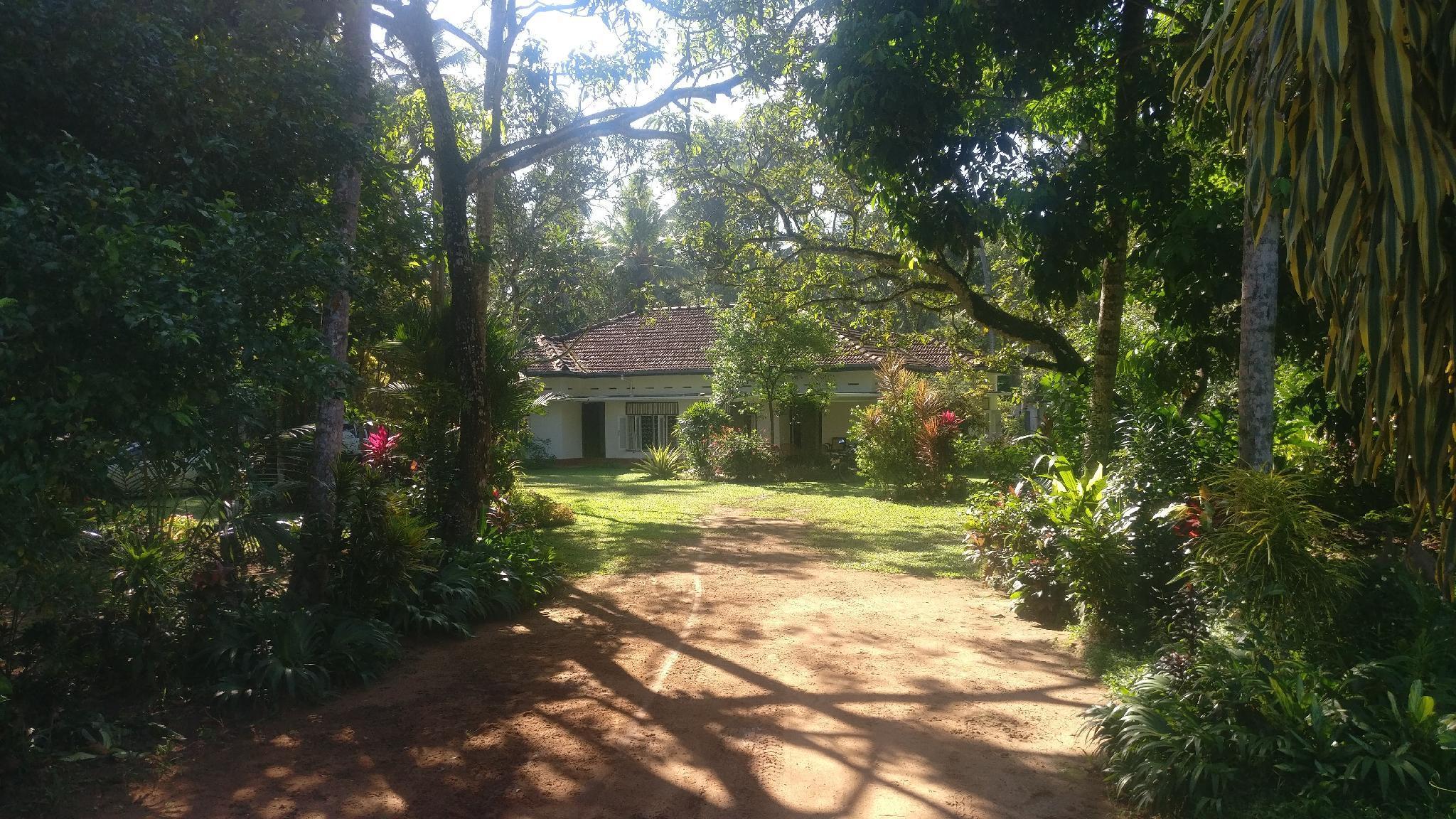 Countryside Estate Homestay