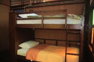 ザ オールド ホステル スラタニ The Old Hostel Suratthani
