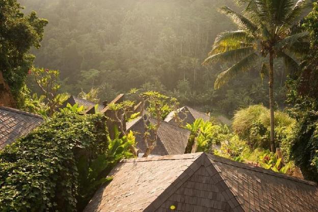 Classy with Garden & Pool View + Breakfast  @Ubud