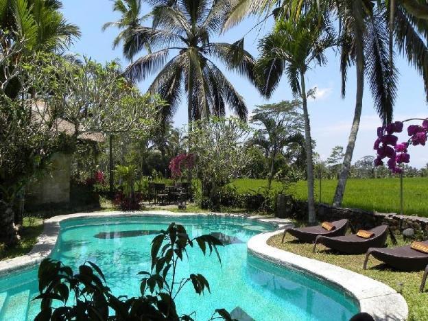 1BR Rice Fiels View @Ubud