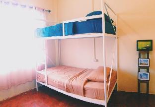 オールディー アンド スリーピー ホステル Oldie and Sleepy Hostel