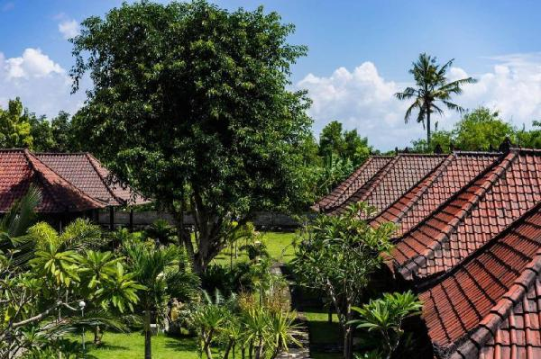 The Cozy Twin and Double ( En-Suite ) Bali
