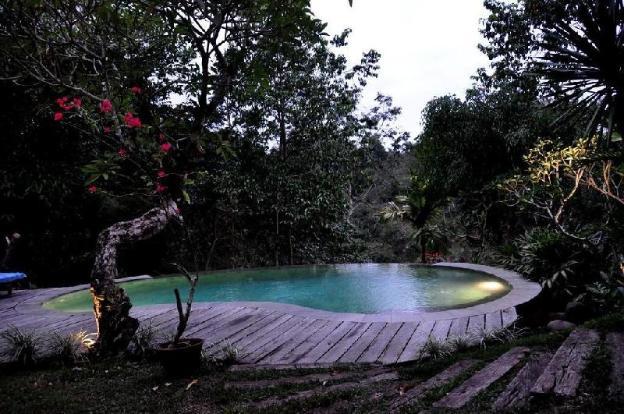 Private Pool Jungle
