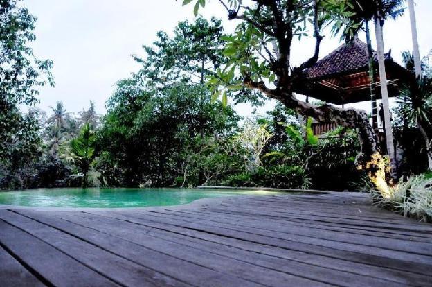 Jungle and River 4BR