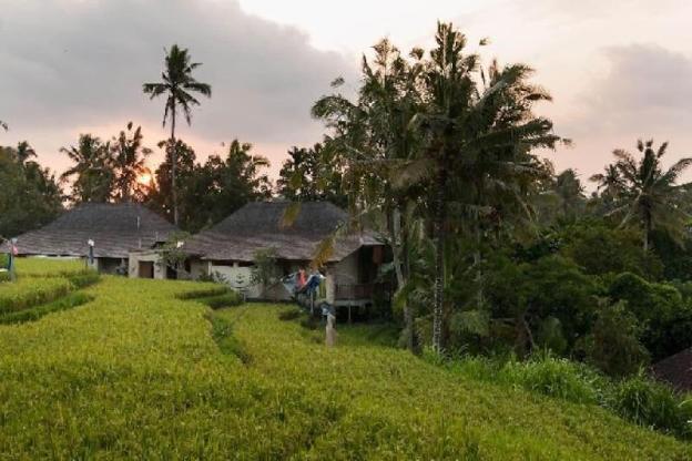 Ubud  Green Paradise. Villa Uma-Ijo