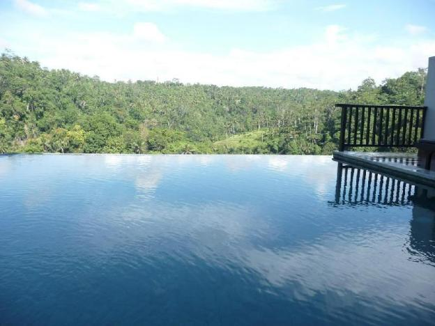 1BR Private Pool with Jungle View @Ubud