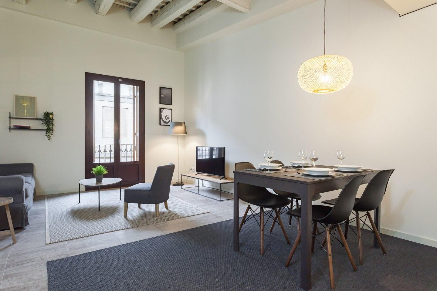Great Port Vell apartment
