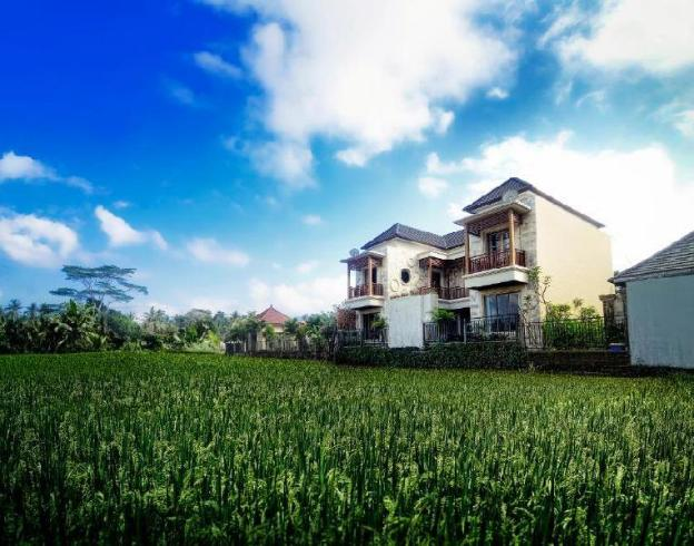 1 BR Family Suite + Breakfast @ubud Bali