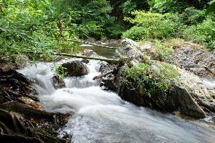 Pi Creek Hideaway Resort