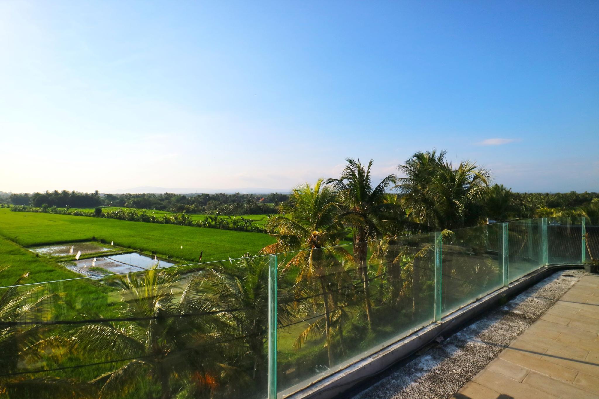 The CaZ Bali