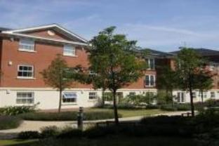 Jago Apartment At Pravonix