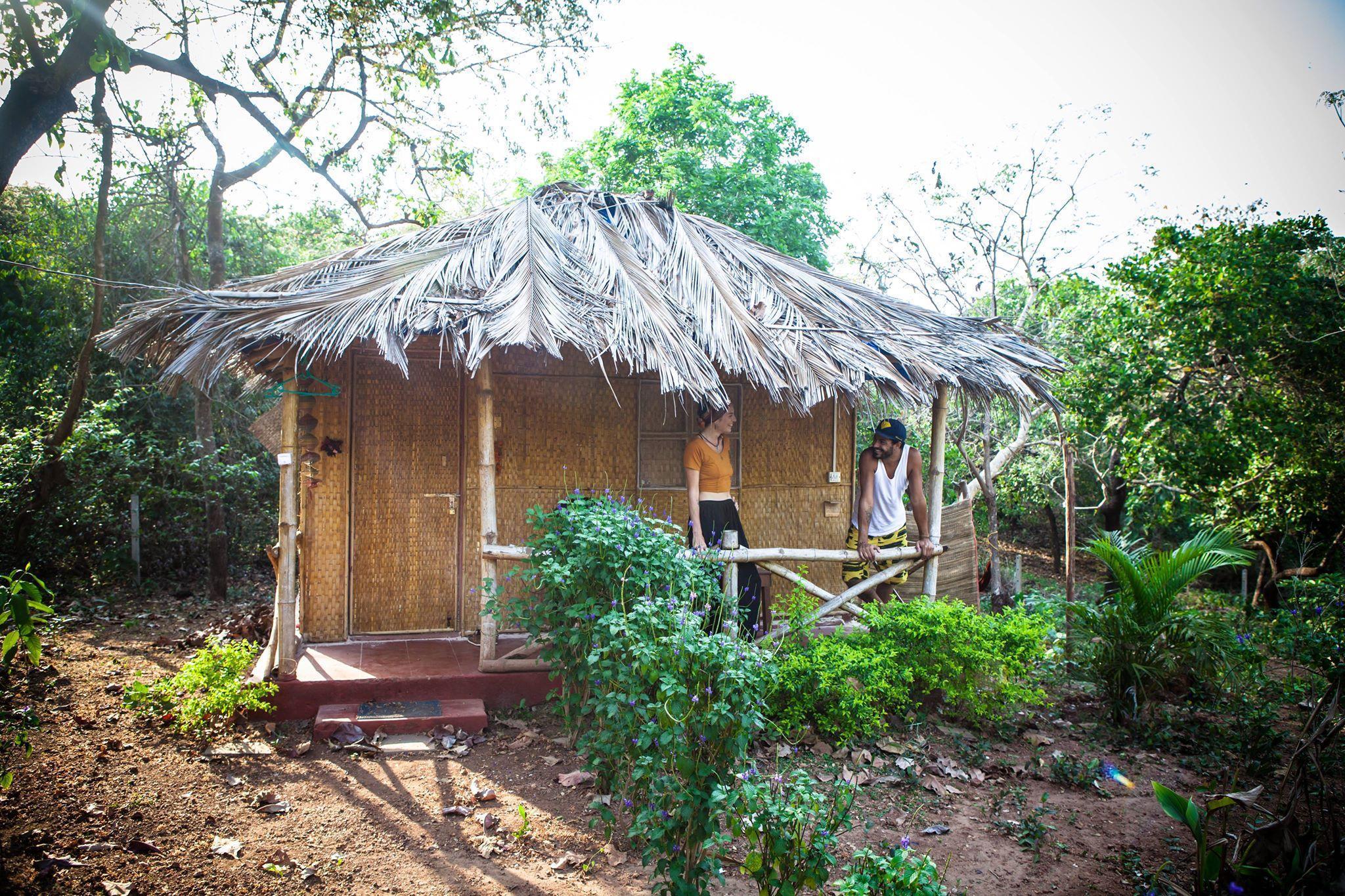 Credo Jungle Resort   Agonda