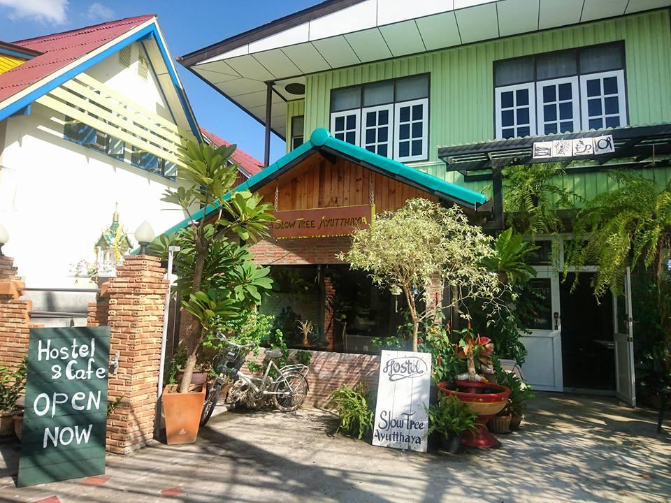 Slowtree Ayutthaya