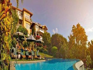 picture 5 of Amarela Resort