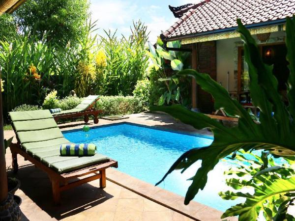 Dolphin at Lovina Beachhouse Villas Bali