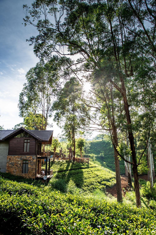 The Farm Resorts