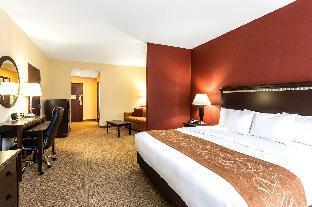 Comfort Suites Forrest City Ar United States Hotel Hostingerapp Com
