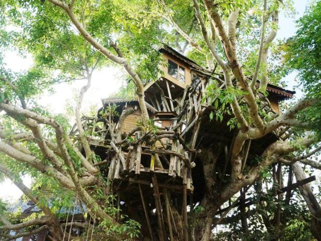 ปาย ทรีเฮาส์ รีสอร์ท – Pai Treehouse Resort