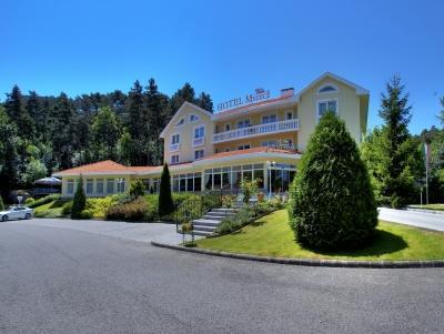 Villa Medici Hotel And Restaurant