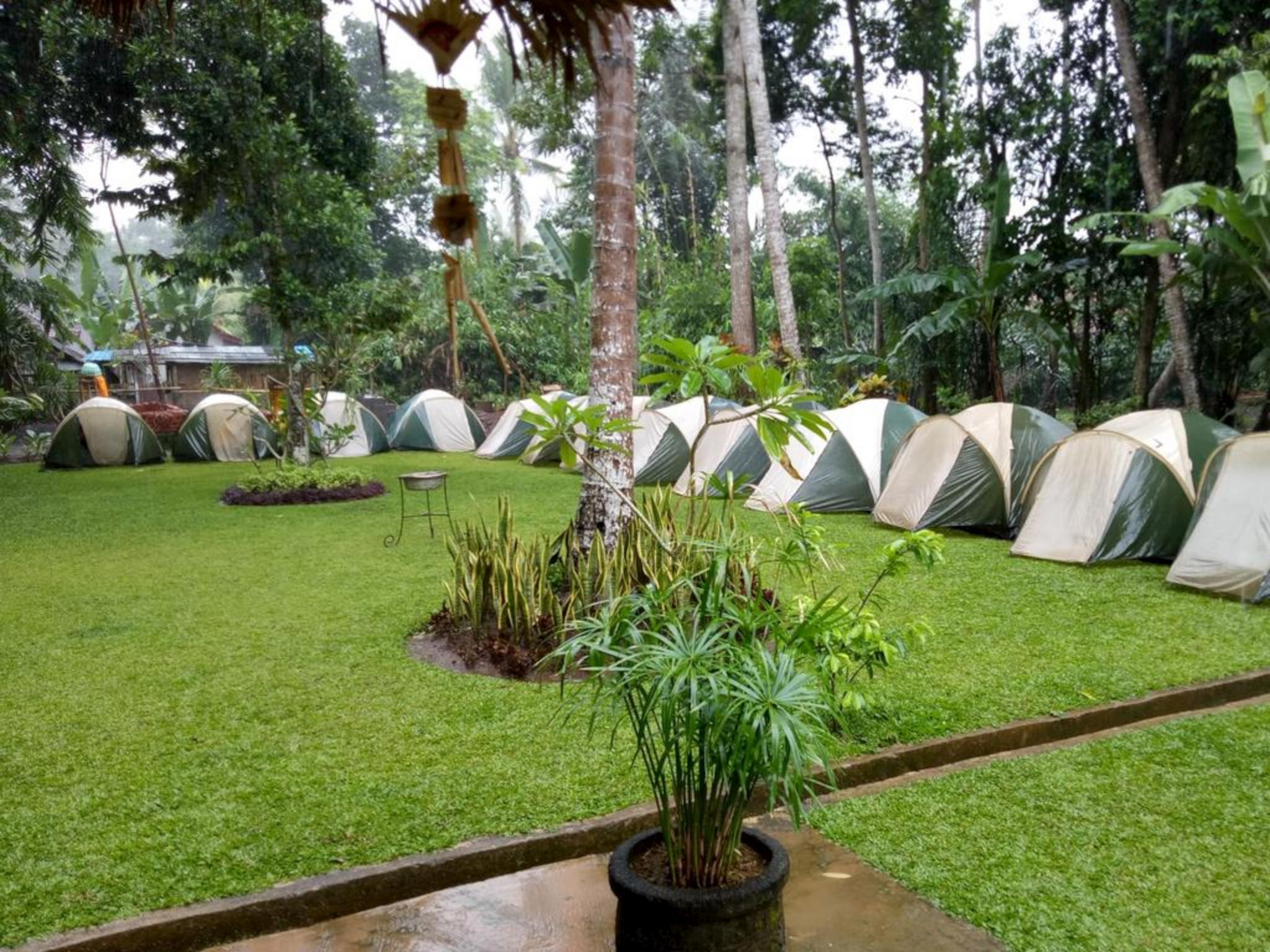 Hotels Review: Bali Camping Ubud Camp – Photos, Prices and Deals