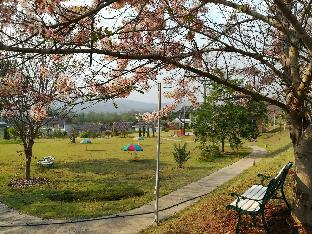 %name Phupaikaew Resort ปาย