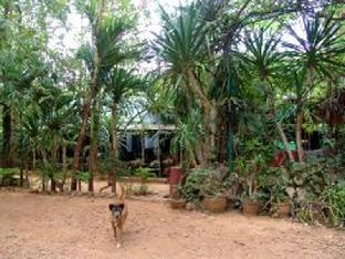 Sam's Jungle Guesthouse แซมส์ จังเกิล เกสต์เฮาส์