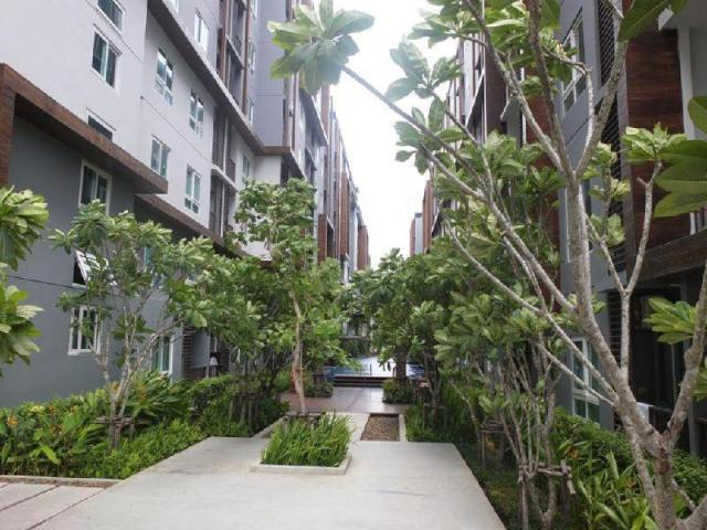 The Trust Residence Central Pattaya, Unit 7 – The Trust Residence Central Pattaya, Unit 7